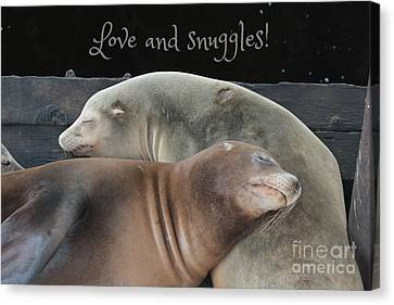 Love And Snuggles Canvas Print by Carol Groenen