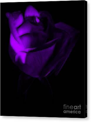Love In The Dark Canvas Print by Krissy Katsimbras