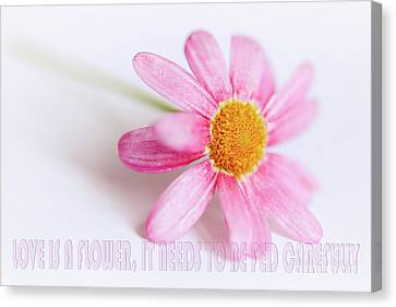 Love Is A Flower Canvas Print