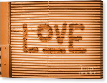 Love Is All Canvas Print