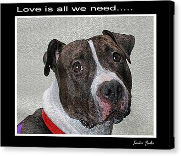 Love Is All We Need Canvas Print