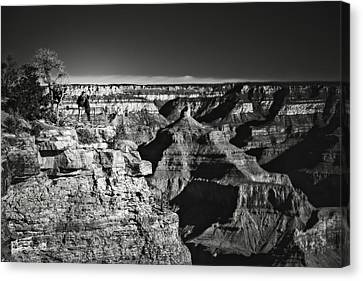 Marvelous View Canvas Print - Love Is In The Air Black And White by Eduard Moldoveanu