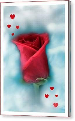 Love Is In The Air Canvas Print by Linda Sannuti