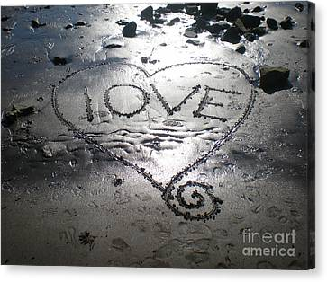 Canvas Print featuring the photograph Love by Kim Prowse