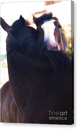 Horse Stable Canvas Print - Love by Linda Shafer