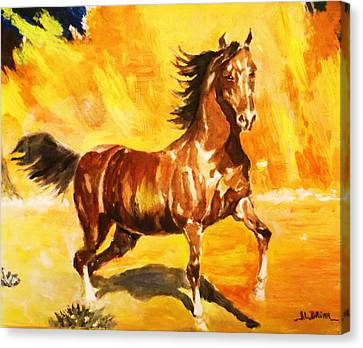 Lone Mustang Canvas Print by Al Brown