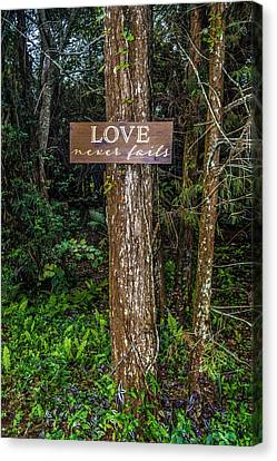 Love On A Tree Canvas Print by Josy Cue