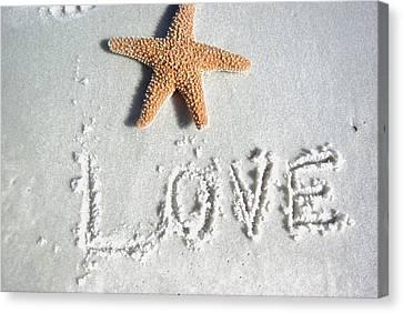 Love On The Sand Canvas Print
