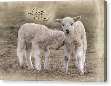 Canvas Print featuring the photograph Love One Another by Robin-Lee Vieira