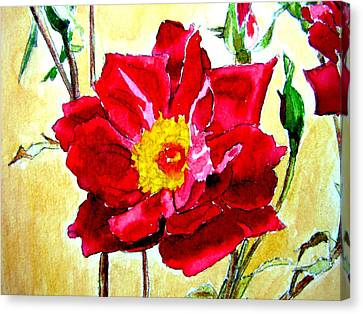 Canvas Print featuring the painting Love Rose by Ana Maria Edulescu