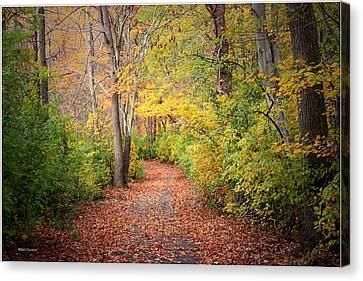 Lovely Autumn Canvas Print by Mikki Cucuzzo