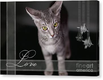 Lovely Face Card Canvas Print