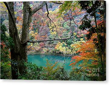 Lovely Landscape By Tim Wilson Canvas Print