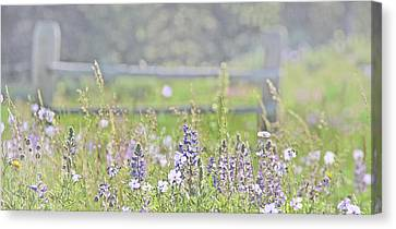 Canvas Print featuring the photograph Lovely Montana Wildflowers by Jennie Marie Schell