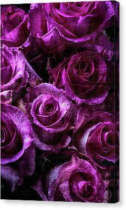Lovely Moody Roses Canvas Print