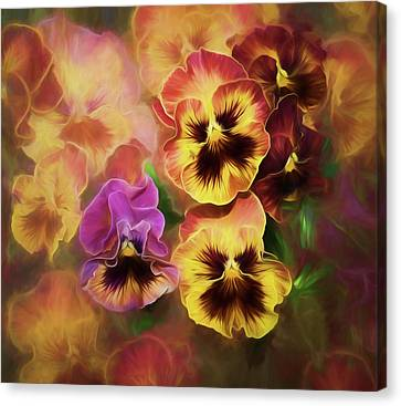 Lovely Spring Pansies Canvas Print by Diane Schuster