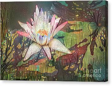 Lovely Waterlilies 2 Canvas Print by Amy Cicconi