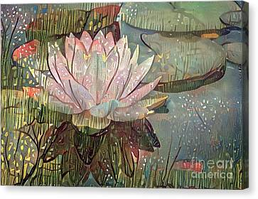 Water Lillies Canvas Print - Lovely Waterlilies 5 by Amy Cicconi