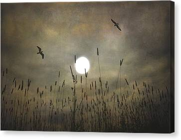 Lovers Moon Canvas Print
