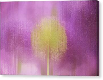 Loving Light Canvas Print