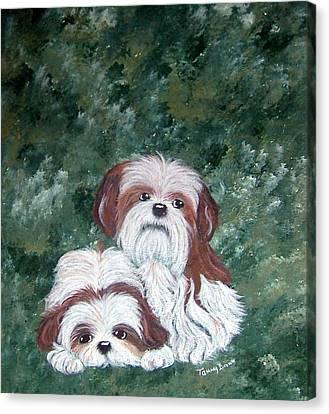 Loving Shih Tzu Canvas Print by Tammy Brown