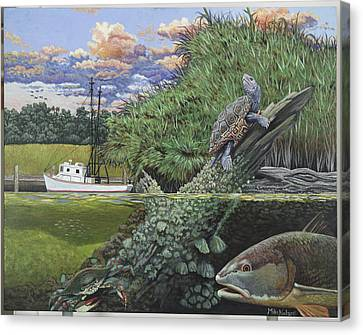 Diamondbacks Canvas Print - Low Country by Mike Nolan