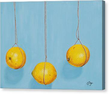 Low Hanging Lemons Canvas Print by Emily Page