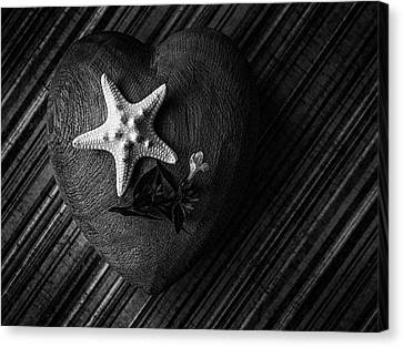 Low Key Heart And Starfish Canvas Print