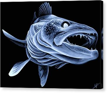 Low Light Walleye Canvas Print by Nick Laferriere