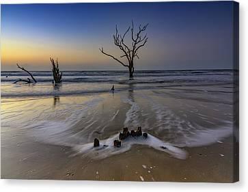Low Tide At Botany Bay Canvas Print