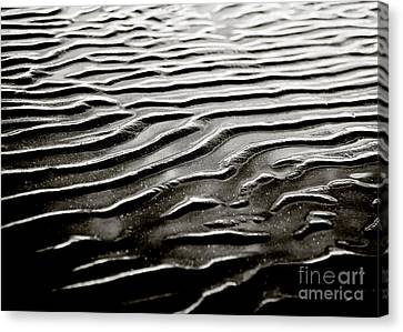 Low Tide  Canvas Print by Charmian Vistaunet