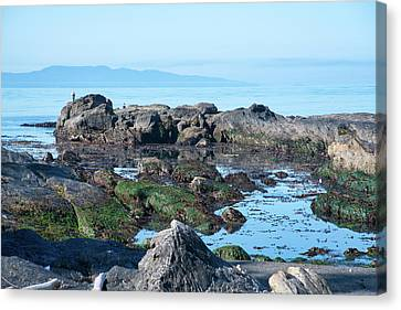 Juan De Fuca Provincial Park Canvas Print - Low Tide On Botany Bay by Keith Boone