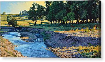 Low Water Morning Canvas Print by Bruce Morrison