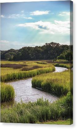 Lowcountry Creek Canvas Print by Drew Castelhano