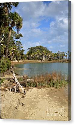 Lowcountry Lagoon Canvas Print by Louise Heusinkveld
