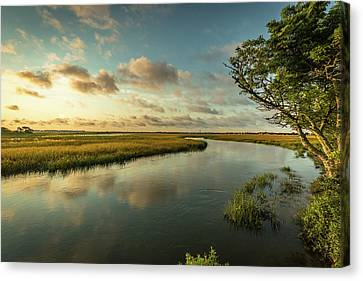 Pitt Street Bridge Creek Sunrise Canvas Print