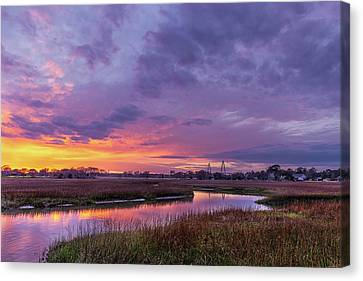 Lowcountry Winter  Canvas Print