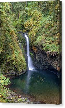 Lower Butte Creek Falls Plunging Into A Pool Canvas Print by David Gn