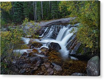 Lower Copeland Falls Canvas Print by Gary Lengyel