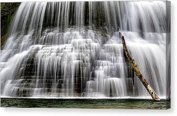 Lower Falls And Log Canvas Print