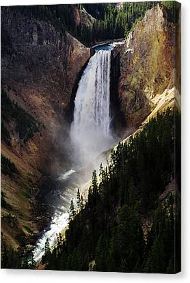 Lower Falls At Yellowstone Canvas Print by Mary Capriole