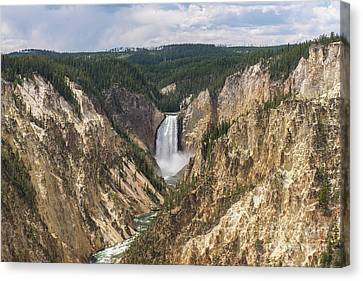 Lower Falls Of The Yellowstone Canvas Print