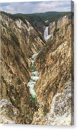 Lower Falls Of The Yellowstone - Portrait Canvas Print