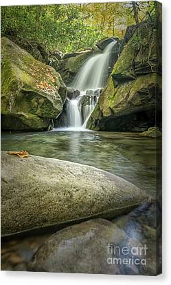 Lower Grotto Falls Canvas Print by Patrick Shupert
