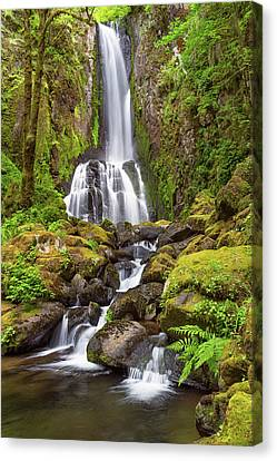 Canvas Print featuring the photograph Lower Kentucky Falls In Spring by Patricia Davidson