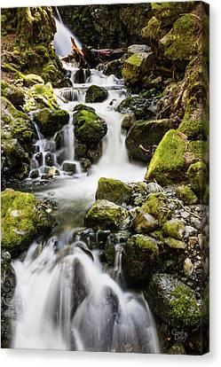 Lower Lupin Falls   Canvas Print