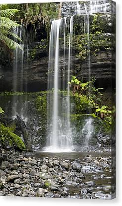 Lower Russell Falls Tasmania  Canvas Print by Odille Esmonde-Morgan