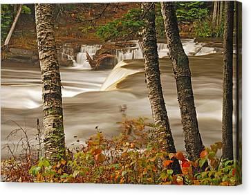Lower Tahquamenon Falls 5 Canvas Print by Michael Peychich
