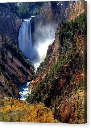 Lower Yellowstone Falls Canvas Print by Alan W Cole