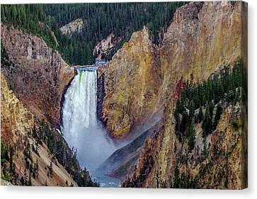 Lower Yellowstone Falls II Canvas Print by Bill Gallagher